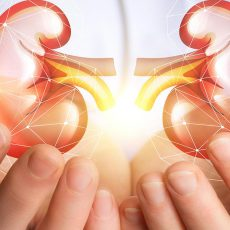 Renal Transplantation among Patients with ESRD Due to Lupus Nephritis