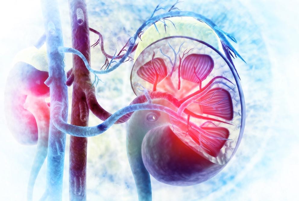 Bệnh thận và thai kỳ: phần 3 – tổn thương thận cấp tính trong thai kỳ